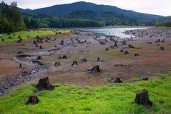 Tronçons morts de coupure dans le lit de la rivière Photographie stock libre de droits