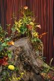 Tronc d'arbre avec des ficelles rouges Image libre de droits