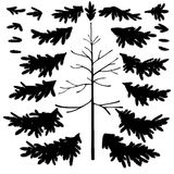 Tronc d'arbre de Noël et silhouettes de branches Photographie stock
