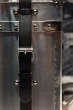 Tronc métallique argenté Image libre de droits