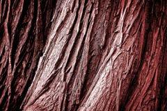 Tronc rouge avec le fond de texture Photos stock