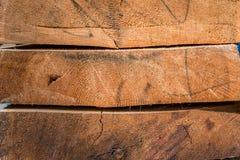Tronchi di albero Immagini Stock