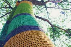 Tronchi di albero decorati con vestito nelle creazioni meravigliosamente tricottate in vari colori fotografia stock libera da diritti