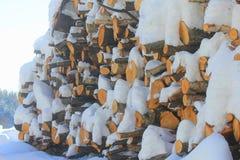 Tronchi di legno con neve immagine stock libera da diritti