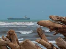 Tronchi di legno e del mare fotografia stock libera da diritti
