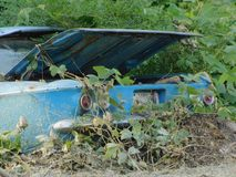 Tronco aberto abandonado velho do carro imagens de stock
