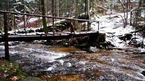 Tronco caido grande de la picea, abeto en el bosque, río de la montaña, corriente, cala con los rápidos en el último otoño, invie almacen de metraje de vídeo