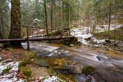 Tronco caido grande de la picea, abeto en el bosque, río de la montaña, corriente, cala con los rápidos en el último otoño, invie fotos de archivo libres de regalías