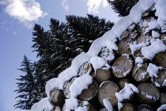 Tronco con nieve Escena del invierno en las montañas en dolomías Imagenes de archivo