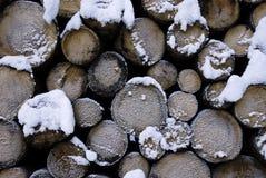 Tronco con nieve Escena del invierno en las montañas en dolomías Foto de archivo