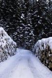 Tronco con nieve Escena del invierno en las montañas en dolomías Imagen de archivo libre de regalías