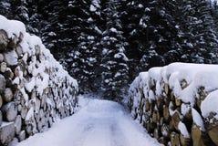 Tronco con nieve Escena del invierno en las montañas en dolomías Fotos de archivo libres de regalías