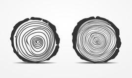 Tronco de árbol del corte de la sierra Imagen de archivo libre de regalías
