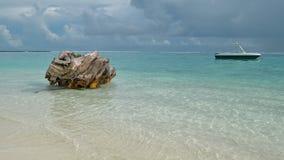 Tronco de árbol en el océano Imagenes de archivo