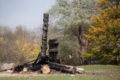 Tronco de árbol quemado foto de archivo