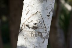 Tronco de árvore com palavra do entalhe Imagem de Stock