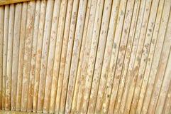 Tronco de árvore da textura fotos de stock