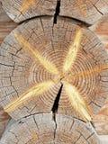 Tronco de la cabaña de madera Fotografía de archivo libre de regalías