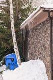 Tronco de la nieve acumulada por la ventisca del andbig del abedul delante del garaje Fotografía de archivo