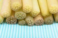 Tronco de Lotus para cocinar en plato verde Imagen de archivo libre de regalías