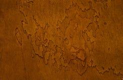 Tronco dell'albero di Platan in filtro fotografia stock