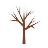 Tronco di albero con i branchs senza primo piano delle foglie illustrazione vettoriale