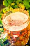 Tronco di legno della birra dorata della pinta Immagini Stock Libere da Diritti