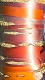 Tronco di mogano del ciliegio fotografie stock libere da diritti