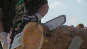 Tronco do corte da serra de cadeia Homem com a serra de cadeia que corta a árvore Serra de cadeia para cortar ascendente próximo  video estoque
