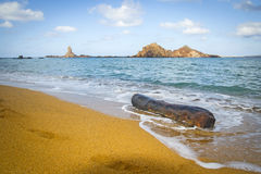 Tronco in spiaggia di Pregonda, Menorca Fotografia Stock