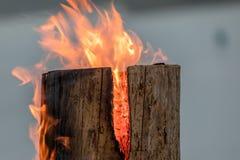Troncone bruciante del fuoco svedese della torcia sul piatto per resto e per il riscaldamento nell'inverno fotografia stock