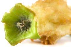 Troncone della mela isolato su fondo bianco Immagini Stock Libere da Diritti