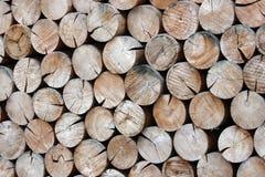 Troncos de árbol apilados cuidadosamente Imagen de archivo