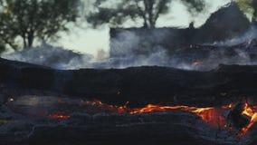 Troncos de árbol que queman lentamente en una hoguera