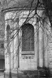 Troncos de árbol vistos iglesia vieja del thgrough Foto de archivo libre de regalías