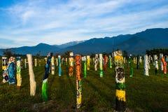 Troncos de árvore coloridos Foto de Stock Royalty Free