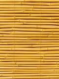 Troncos de árvore um bambu Fotografia de Stock