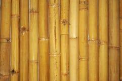 Troncos de bambú Fotografía de archivo