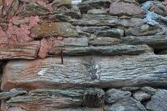 Troncos de madeira Fotografia de Stock