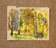 Troncos del abedul blanco en un vestido de oro Acuarela rusa del otoño Imagenes de archivo