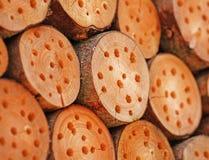 Troncos para abelhas Foto de Stock