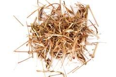 Troncos y hojas secados del Cymbopogon fotografía de archivo libre de regalías
