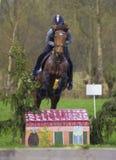 Troncos y saltos de árbol de salto de la competencia adolescente del campo a través del caballo sobre barriles de agua y de barra Fotos de archivo libres de regalías