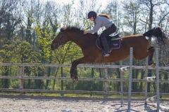 Troncos y saltos de árbol de salto de la competencia adolescente del campo a través del caballo sobre barriles de agua y de barra Foto de archivo