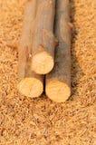 Troncs d'arbre empilés sur le fond de cosse Images stock