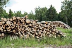 Troncs des arbres coupés et empilés dans le premier plan Image stock