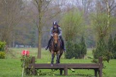 Troncs et sauts d'arbre sautants de concurrence adolescente de pays croisé de cheval au-dessus des barils de l'eau et de discrimi Photographie stock