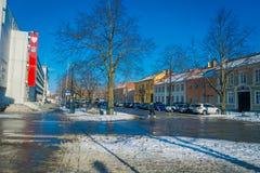 TRONDHEIM NORWEGIA, KWIECIEŃ, - 04, 2018: Plenerowy widok jelenia statua w ulicach w tradycyjnych Skandynawskich budynkach Obraz Stock
