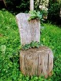 Trono de madera Fotografía de archivo