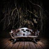 Trono di legno maestoso Fotografia Stock Libera da Diritti
